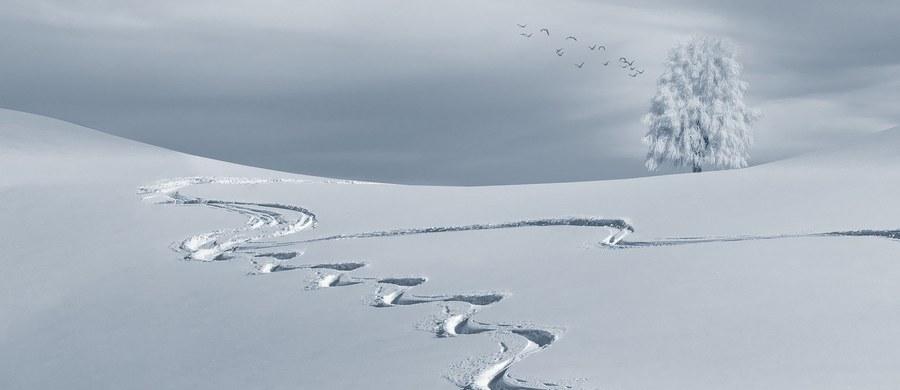 Choć pogoda w Polsce daleka jest od zimowej, właśnie dziś rozpoczęła się astronomiczna zima. Potrwa ona do 20 marca. O pierwszym dniu zimy postanowiła przypomnieć wyszukiwarka Google, która przygotowała z tej okazji wyjątkową formę swojego logotypu, która jest wyświetlana na stronie głównej. To tzw. Google Doodle.