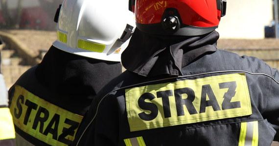 Tragiczny pożar na warszawskim Bemowie. Jak informują strażacy, zginęły w nim dwie starsze osoby.