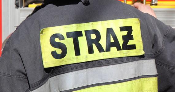 Straż Pożarna podczas tegorocznej Wigilii wyjeżdżała do 959 zdarzeń, w których zginęły trzy osoby - przekazał rzecznik komendanta głównego Państwowej Straży Pożarnej Paweł Frątczak.