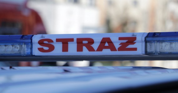 Strażacy opanowali pożar, który wybuchł w niedzielę w ubojni w Starem Bystrem koło Nowego Targu. W pożarze nie ucierpieli ludzie ani zwierzęta - powiedział dyżurny nowotarskiej straży pożarnej.