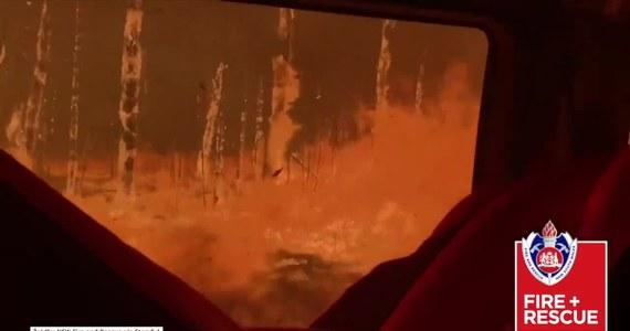 Strażacy z Nowej Południowej Walii w Australii opublikowali nagranie z przejazdu przez szalejące płomienie. W nocy w pożarach zginęły dwie osoby. Tym samym od początku października tragiczny bilans wzrósł do 12 ofiar śmiertelnych.