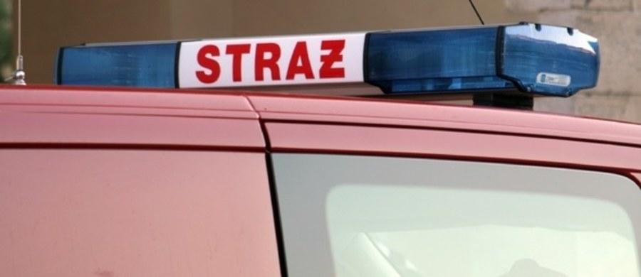 W restauracji przy ul. Wersalskiej w Łodzi wybuchła butla z gazem. Jedna osoba została poparzona.