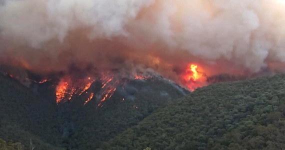 """Premier Nowej Południowej Walii Gladys Berejiklian zaapelowała do mieszkańców o jak najszybszą ewakuację z terenów zagrożonych pożarami. Jak podkreśliła: stoimy przed kolejnym okropnym dniem. """"Opuszczajcie domy dopóki możecie"""" - dodała."""