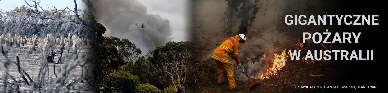 Od października Australię trawią pożary. Niszczycielski żywioł zaatakował w tym roku wcześniej niż zwykle, a rekordowo wysokie temperatury na kontynencie utrudniają walkę z ogniem.  Tysiące ludzi zostało...