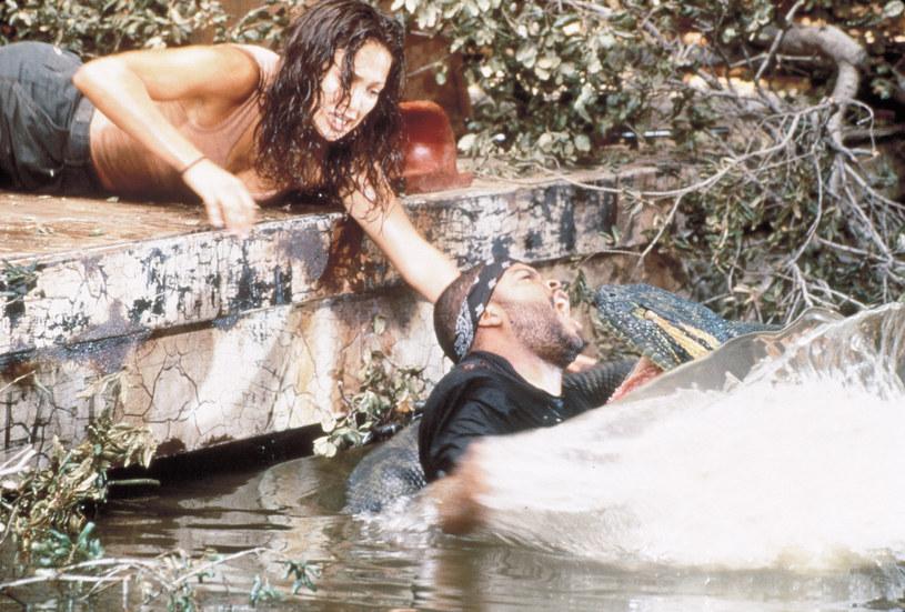 """Złe recenzje oraz sześć nominacji do Złotych Malin nie zraziły widzów. Wyreżyserowany w 1997 roku przez Luisa Llosę film """"Anakonda"""" świetnie poradził sobie w kinach, przynosząc zysk przekraczający 130 milionów dolarów. Teraz, na fali powodzenia innych filmów o morderczych zwierzętach, pojawił się pomysł powrotu do tej opowieści o ogromnym wężu zamieszkującym Amazonię."""