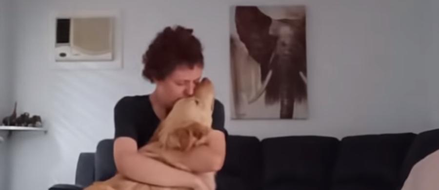 Pies jest najlepszym przyjacielem człowieka! To nagranie tylko to potwierdza. Gdy pewnego dnia cierpiąca na autyzm Australijka dostała ataku paniki, jej czworonożny towarzysz profesjonalnie ją uspokoił i nie pozwolił, by zrobiła sobie coś złego.