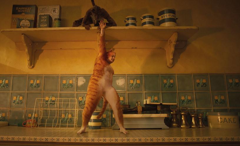 """Nieprzychylne recenzje i tragiczne wyniki finansowe ekranowej wersji musicalu """"Koty"""" znalazły finał w ogłoszonych w przededniu Oscarów nominacjach do Złotych Malin. Produkcja Toma Hoppera to bowiem niechlubny lider w rywalizacji o najmniej zaszczytne filmowe nagrody na świecie."""