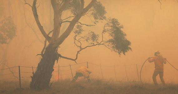 Wszystkie pożary w australijskim stanie Nowa Południowa Walia, który w ciągu ostatnich miesięcy najbardziej ucierpiał od niszczycielskiego żywiołu, zostały opanowane - poinformowała w czwartek miejscowa straż pożarna.