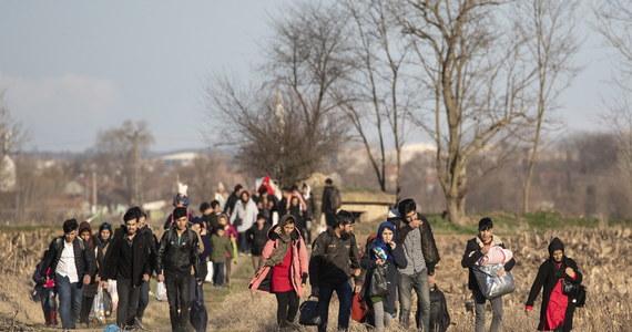 Grecka straż graniczna zatrzymała setki migrantów, którzy próbowali dostać się na terytorium Grecji z Turcji - poinformowała AFP, powołując się na greckie źródła policyjne. Migranci próbowali przekroczyć granicę po decyzji Ankary o przepuszczaniu do Europy uchodźców z Syrii.