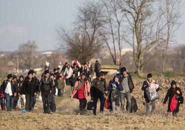 Grecka straż graniczna zatrzymała setki migrantów z Turcji