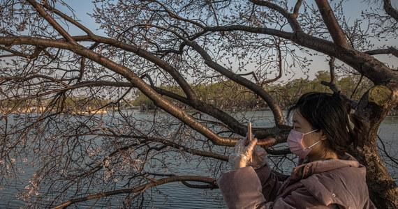 W Chinach kontynentalnych przez kolejną dobę nie potwierdzono żadnego nowego przypadku lokalnego zakażenia koronawirusem. Wszystkie 39 nowych infekcji wykryto u osób, które przybyły z zagranicy – poinformowała państwowa komisja zdrowia.