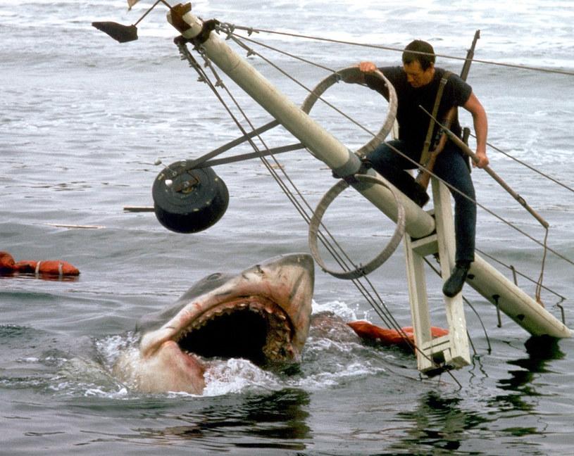"""9 czerwca 2021 roku na deskach leżącego w New Jersey teatru Paper Mill Playhouse zadebiutuje musical """"Bruce"""". Jego bohaterem będzie słynny rekin, który polował na bohaterów obchodzącego właśnie swoje 45-lecie filmu Stevena Spielberga """"Szczęki""""."""