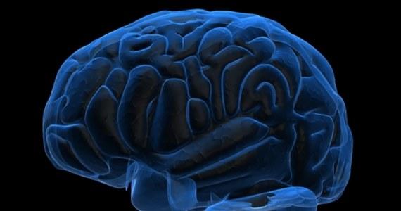 """Koronawirus może być niebezpieczny neurologicznie. Coraz więcej tego typu przypadków pojawia się w światowej prasie specjalistycznej. """"Nie jest to zaskoczeniem, ponieważ jednoznaczne dowody stwierdzono przy SARS–COV 1, a obecny jest dużo bardziej zaraźliwy i mocniejszy w działaniu"""" – mówi w RMF FM prof. Konrad Rejdak – szef lubelskiej Kliniki Neurologii, prezes elekt Polskiego Towarzystwa Neurologicznego. """"Osłabienie węchu czy smaku to jeden z dowodów, ale co gorsza, koronawirus może zaatakować bezpośrednio ośrodki odpowiedzialne za oddech"""" – ostrzega."""