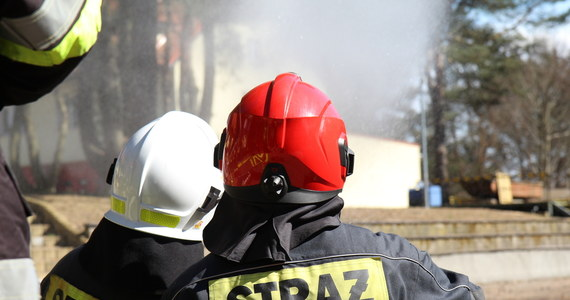 Pożar tartaku w Niecieczy Włościańskiej w powiecie sokołowskim na Mazowszu. Spłonęły dwa budynki i składowane w nich drewno. W akcji gaśniczej bierze udział 65 strażaków.