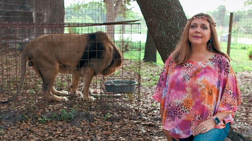 """Carole Baskin to obrończyni praw zwierząt, która miała być pozytywną bohaterką hitowego dokumentu Netfliksa """"Król tygrysów"""". Tymczasem za sprawą wydarzeń z przeszłości, zaczęło się o niej mówić negatywnie. Wszystko z powodu tajemniczego zniknięcia jej bogatego męża, po którym odziedziczyła pokaźny spadek. Spekuluje się, że Baskin mogła stać za jego zaginięciem i że nakarmiła nim tygrysy."""