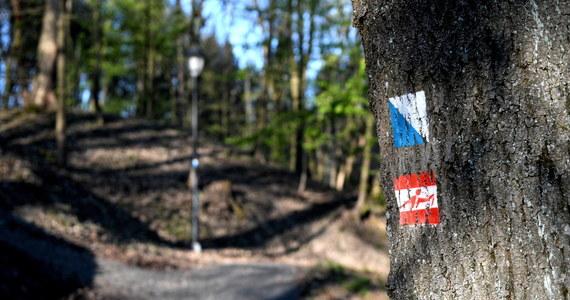 Zakaz wstępu do lasów, wprowadzony z powodu epidemii koronawirusa, został zniesiony. O otwarciu szlaków zdecydowali m.in. dyrektorzy Bieszczadzkiego Parku Narodowego czy Karkonoskiego Parku Narodowego. Otwarte są także inne parki narodowe: sprawdź które!