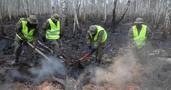 W niedzielę sztab zarządzający dogaszaniem pożaru w Biebrzańskim Parku Narodowym będzie podejmował decyzje, czy wycofywać już część strażaków, którzy biorą udział w tej akcji - poinformował w sobotę wieczorem PAP rzecznik PSP w Białymstoku Tomasz Gierasimiuk.