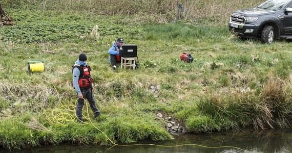 Wznowiono poszukiwania 3,5 Kacpra. Chłopiec tydzień temu zaginął w Nowogrodźcu. Nadal trwa sprawdzanie rzeki Kwisa oraz odnogi tej rzeki w Nowogrodźcu.