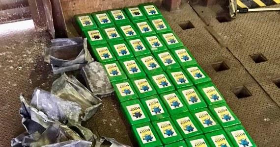 Ponad 50 kilogramów kokainy przejęli ukraińscy pogranicznicy w jednym z portów w Odessie. To rekordowa w tym roku partia przechwycona przez służby na Ukrainie.