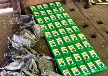 Przemytnicy ukryli kokainę w bananach. Paczki były znaczone Minionkami