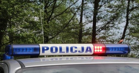 Kolejny dzień poszukiwań 3,5-letniego chłopca, który w poprzedni poniedziałek zaginął w Nowogrodźcu, nie przyniósł efektów. W piątek policjanci i strażacy ponownie przeczesywali koryto rzeki Kwisy i tereny wzdłuż jej brzegu.