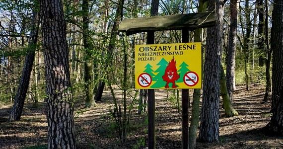 Zwiększyło się zagrożenie pożarowe w lasach w wielu regionach Polski. Jak wynika z danych Instytutu Badawczego Leśnictwa, najtrudniejsza jest sytuacja na północy kraju.