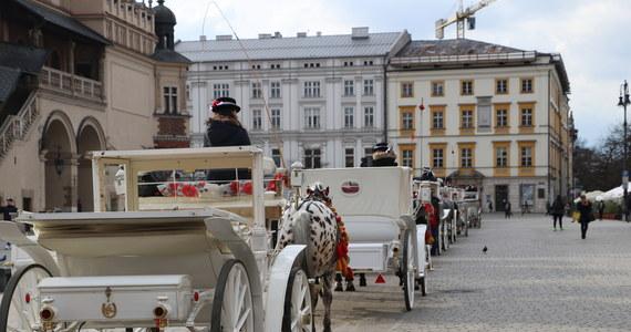 Zarzuty znęcania się nad zwierzęciem usłyszał dorożkarz w związku ze śmiercią konia Pilsnera. Do zdarzenia doszło w styczniu ub.r. na krakowskim Rynku. Zwierzę ciągnące dorożkę przewróciło się, a obrażenia były na tyle poważne, że weterynarz zdecydował o uśpieniu konia.