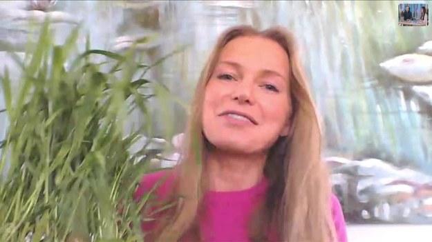 Trawa pszeniczna może się okazać potężnym pomocnikiem w walce o zdrowie i dobre samopoczucie. Oprócz dobroczynnego chlorofilu znajdują się w niej również witaminy A, C, E czy minerały takie jak magnez, wapń, potas. O wpływie młodej pszenicy na zdrowie opowiedziała Agnieszka Cegielska. (Dzień Dobry TVN/x-news)