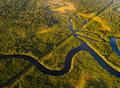 """Będą kolejne epidemie. Amazonia to """"tykająca bomba"""""""