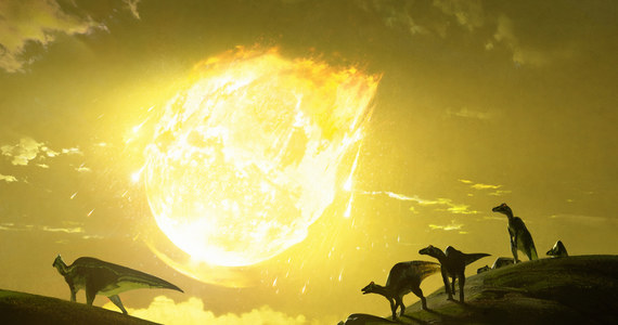 """Dinozaury miały prawdziwego pecha, planetoida, która zakończyła ich panowanie uderzyła w Ziemię pod najgorszym możliwym dla nich kątem, do maksimum zwiększając zabójcze klimatyczne skutki - piszą na łamach czasopisma """"Nature Communications"""" naukowcy z Imperial College London. Ich symulacje wskazują, że uderzenie pod kątem 60 stopni wyrzuciło w atmosferę miliardy ton siarki, przesłaniając światło słoneczne i prowadząc do zimy nuklearnej, która zabiła 75 proc. życia na Ziemi."""