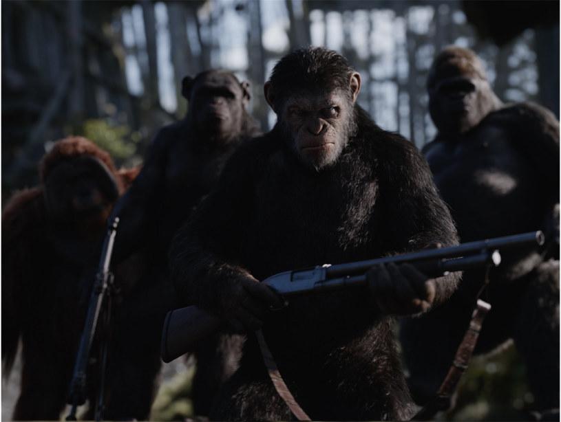 """Reżyser kolejnej odsłony uniwersum """"Planety małp"""" Wes Ball wyjawił, że niedługo powinny rozpocząć się prace nad czwartą częścią tego cyklu. """"Ponieważ to w głównej mierze film robiony przy użyciu efektów komputerowych, wkrótce powinniśmy rozpocząć proces wirtualnej produkcji"""" - mówi. Z powodu pandemii COVID-19 wciąż zamknięta jest większość planów filmowych na całym świecie, co opóźnia produkcje podobnych do """"Planety małp"""" widowisk filmowych."""