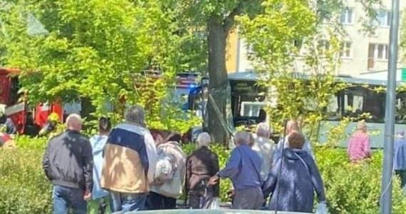 """W piątek w Górze Kalwarii (woj. mazowieckie) na dk 79 bus uderzył w drzewo. W wypadku rannych zostało 10 osób, a kierowca pojazdu był reanimowany. """"Niestety 55-latek zmarł w szpitalu"""" - poinformował w piątek wieczorem oficer prasowy piaseczyńskiego Komendanta Powiatowego Policji nadkom. Jarosław Sawicki."""