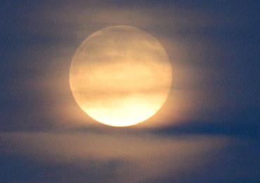 """Spójrz dziś w niebo! Zobaczysz """"truskawkowy Księżyc"""""""