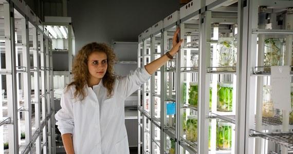 Szkoła Główna Gospodarstwa Wiejskiego w Warszawie to jedna z największych, a zarazem najbardziej prestiżowych uczelni w kraju. Kształci blisko 18 tys. studentów na 38 kierunkach studiów (w tym 8 prowadzonych w języku angielskim) – od weterynarii i architektury krajobrazu, przez ekonomię i informatykę, po dietetykę i Organic Agriculture and Food Production (Ekologiczne rolnictwo i produkcja żywności w języku angielskim). Zatrudnia 1 200 nauczycieli akademickich, mając do dyspozycji nowoczesny kampus oraz doskonałe warunki kształcenia.