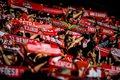 Liga portugalska. Proszą rząd o wsparcie ws. ataków na piłkarzy Benfiki Lizbona