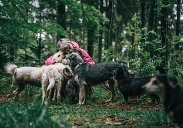 Schronisko dla Schronisk. Skrzywdzone zwierzęta potrzebują nowego lokum