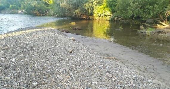 Policja i prokuratura zajmują się sprawą kości odnalezionych przez grupę nastolatków w rzece Sole w Oświęcimiu. Jak informują służby, prawdopodobnie są to kości ludzkie.