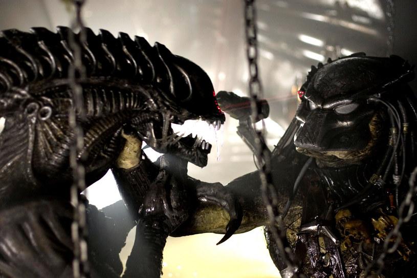 Jedne z najbardziej popularnych postaci gatunku science-fiction - krwiożerczy Obcy oraz nie mniej groźny Predator - przeszły na własność Marvel Comics. Nie oznacza to jednak, że automatycznie zostaną włączone w skład filmowego uniwersum Marvela. Przynajmniej w najbliższym czasie.
