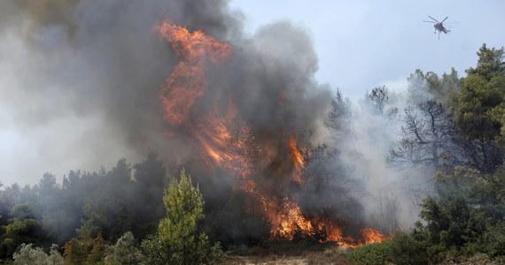 Około 400 dzieci trzeba było ewakuować z letniego obozu po wybuchu pożaru lasu w pobliżu Koryntu na południu Grecji - poinformowały miejscowe władze. W okolicy wiał silny wiatr, który utrudniał walkę z ogniem.