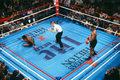 Mike Tyson wraca na ring w walce pokazowej