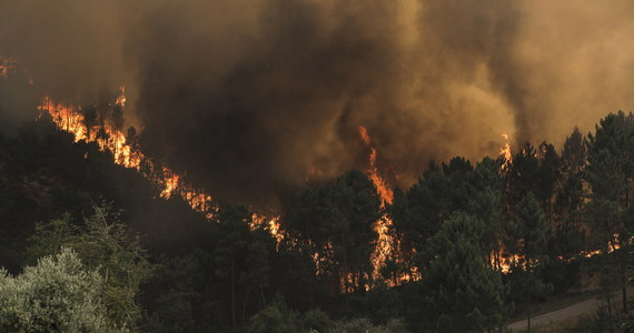 Od północy z niedzieli na poniedziałek w całej Portugalii obowiązuje stan alarmowy związany z dużymi pożarami występującymi na wschodzie oraz północy kraju. Rząd zapowiedział, że stan alarmowy potrwa co najmniej do wtorku.