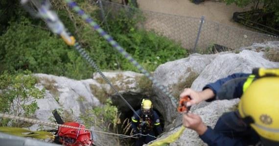 Strażacy-ratownicy ruszyli na ratunek sowie, która utknęła w głębokiej na 40 metrów studni w ruinach średniowiecznego zamku w Bad Segeberg w kraju związkowym Szlezwik-Holsztyn w Niemczech.