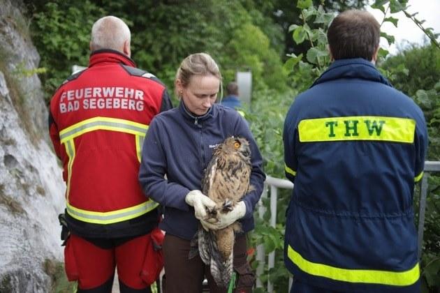 /Foto: Freiwillige Feuerwehr der Stadt Bad Segeberg/Facebook /