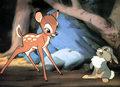 Czy syndrom Bambiego jest niebezpieczny?