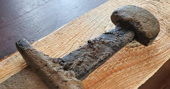 Ozdobiony krzyżem miecz, inkrustowany topór oraz groty włóczni, strzał i bełtów odnaleźli archeolodzy w jeziorze Lednica (Wielkopolskie). Według badaczy to kolejny dowód na istotną rolę grodu na Ostrowie Lednickim w okresie przed panowaniem Mieszka I.