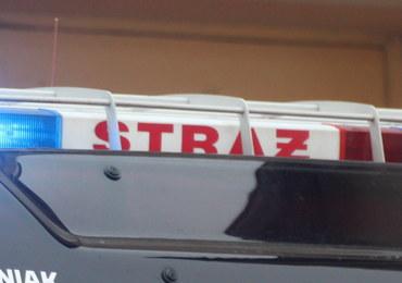 Zagrożenie gazowe w Śląskiem. Kilka akcji strażaków w województwie