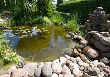 Łódź: 36-latek utopił się w basenie ogrodowym na działkach