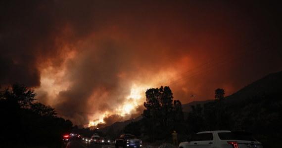 Blisko dwa tysiące strażaków walczy z pożarami szalejącymi w trzech zachodnich stanach USA - Kalifornii, Oregonie i Kolorado. Ogień strawił już 76 tys. akrów (ok. 29,5 tys. hektarów) terenów. Wiele osób zostało ewakuowanych.