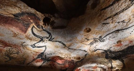 """Udało się uratować bezcenne malowidła naskalne w jaskini Lascaux. Poinformowali o tym francuscy specjaliści w 80. rocznice odkrycia tej groty – zwanej """"prehistoryczną Kaplicą Sykstyńską""""."""