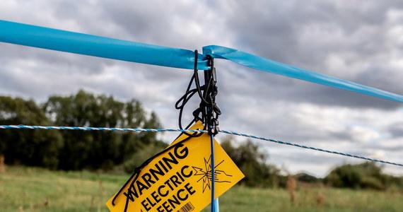 Pierwszy przypadek ASF w Niemczech został oficjalnie potwierdzony u padłego dzika, znalezionego w graniczącym z Polską powiecie Szprewa-Nysa w Brandenburgii. W związku z tym wzdłuż granicy landu Brandenburgia Niemcy ustalili elektryczne pastuchy, które mają odstraszać dziki z Polski.